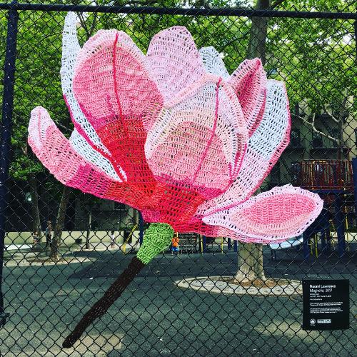 Magnolia; Upper West Side 2017 #artintheparks